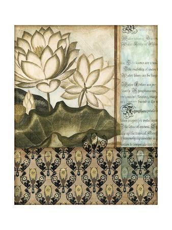 https://imgc.artprintimages.com/img/print/elegant-water-lily-ii_u-l-p8kxa30.jpg?p=0