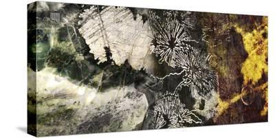Elemental I-Suzanne Silk-Stretched Canvas Print