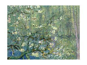 Collage Design with Painting Elements - Almond Branches in Bloom & Trees and Undergrowth by Elements of Vincent Van Gogh