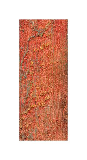 Elements (Orange)-J^ McKenzie-Giclee Print