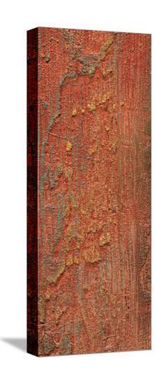Elements (Orange)-J^ McKenzie-Stretched Canvas Print