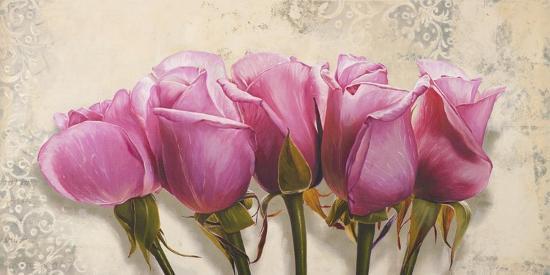 elena-dolci-royal-roses