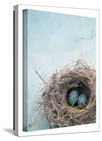 Blue Nest Gallery-Wrapped Canvas