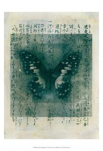 Butterfly Calligraphy I by Elena Ray