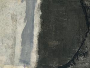Shades of Grey III by Elena Ray