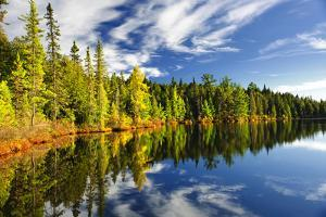 Beautiful Forest Reflecting on Calm Lake Shore at Algonquin Park, Canada by elenathewise