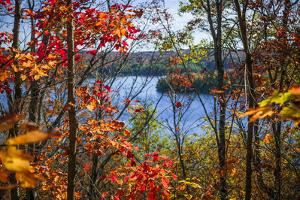Fall Forest Framing Scenic Autumn Lake View from Lookout Trail in Algonquin Park, Ontario, Canada. by elenathewise