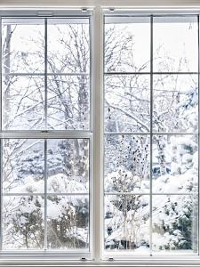 Home Vinyl Insulated Windows with Winter View of Snowy Trees and Plants by elenathewise