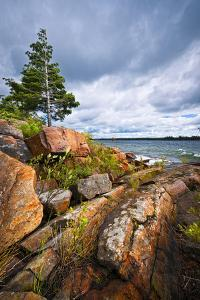 Rocky Lake Shore of Georgian Bay in Killbear Provincial Park near Parry Sound, Ontario, Canada. by elenathewise