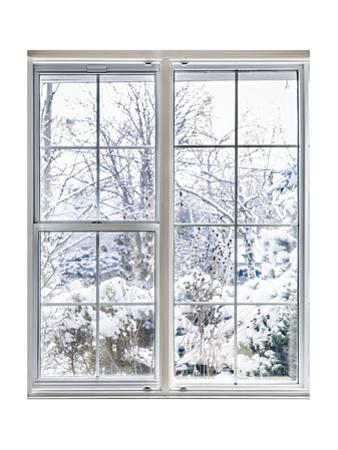Winter View Through Window by elenathewise