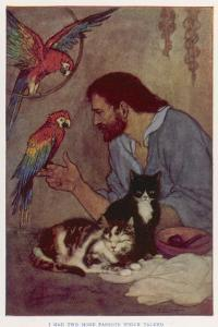 Robinson Crusoe with His Parrots and Cats by Elenore Plaisted Abbott