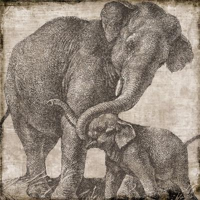 elephant 2--Giclee Print