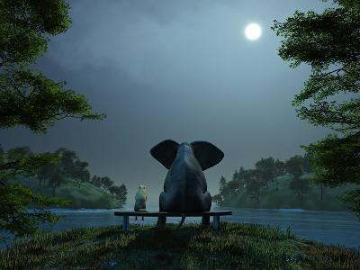 Elephant and Dog Meditate at Summer Night-Mike_Kiev-Premium Photographic Print