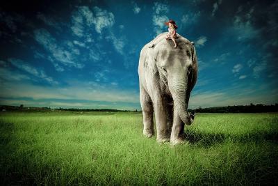 Elephant Carry Me-Jeff Madison-Art Print