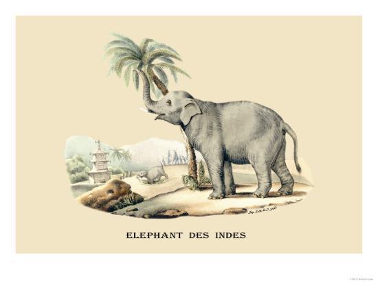 Elephant d'Inde-E^f^ Noel-Art Print