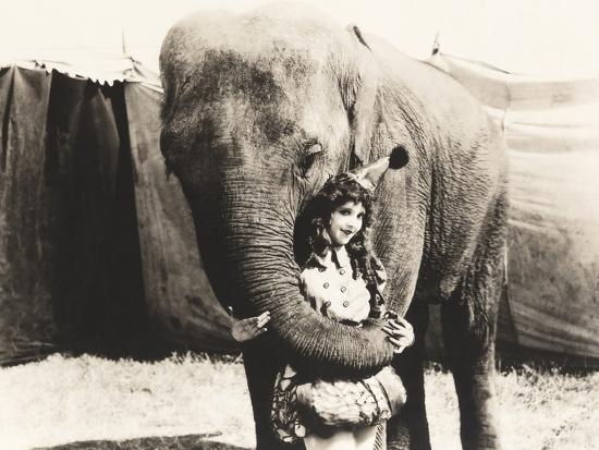 Elephant Embracing Circus Performer--Photo