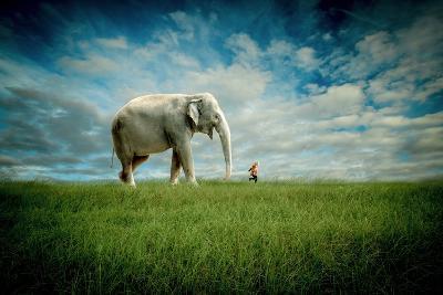 Elephant Follow Me-Jeff Madison-Art Print