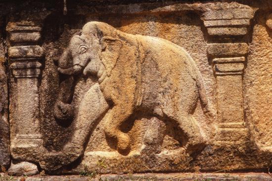 Elephant Frieze on Base of Audience Hall, Polunnaruwa, Sri Lanka, 20th century-Unknown-Photographic Print