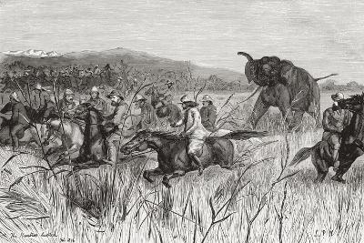 Elephant Hunters in the 19th Century Being Charged by an Elephant--Giclee Print