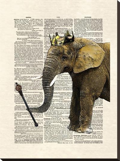 Elephant King-Matt Dinniman-Stretched Canvas Print