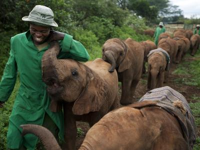 Elephant Orphans Form Intense Bonds With Their Caregivers and Vice Versa-Michael Nichols-Photographic Print