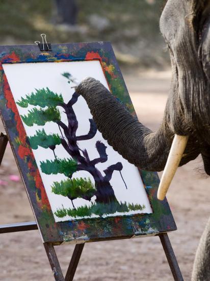 Elephant Painting, Chiang Mai, Thailand, Southeast Asia-Porteous Rod-Photographic Print