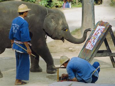Elephant Painting with His Trunk, Mae Sa Elephant Camp, Chiang Mai, Thailand, Asia-Bruno Morandi-Photographic Print