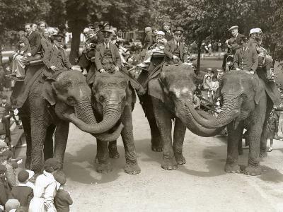 Elephant Rides at London Zoo, July 1936-Frederick William Bond-Photographic Print