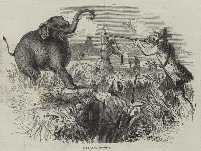 Elephant Shooting--Giclee Print