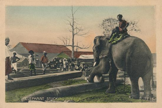 'Elephant Stucking Timber',  c1900-Unknown-Giclee Print