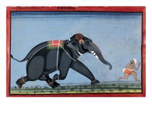 Elephant & Trainer, C1750