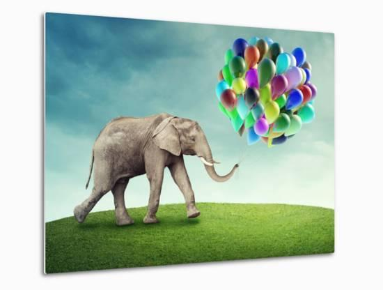 Elephant with a Colorful Balloons-egal-Metal Print