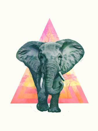 https://imgc.artprintimages.com/img/print/elephant2_u-l-f94s5i0.jpg?p=0