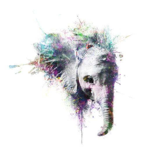 Elephant-VeeBee-Wall Mural