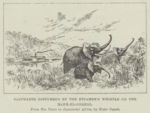 Elephants Disturbed by the Steamer's Whistle on the Bahr-El-Ghazal