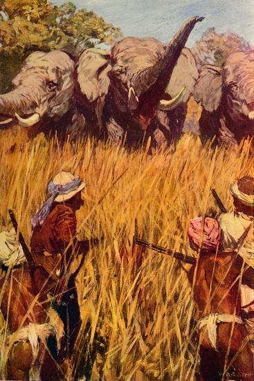 'Elephants in Chase', c1850 (c1912)-Unknown-Giclee Print