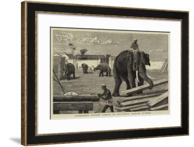 Elephants Moving Timber at Moulmein, British Burmah--Framed Giclee Print