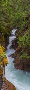Elevated View of a Creek, Mcdonald Creek, Us Glacier National Park, Montana, USA