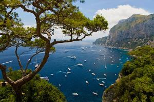 Elevated view of blue waters of the City of Capri, an Italian island off the Sorrentine Peninsul...