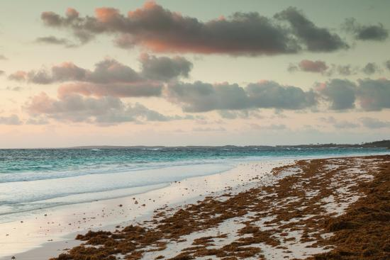 Elevated view of Pink Sands Beach, Dunmore Town, Harbour Island, Eleuthera Island, Bahamas--Photographic Print
