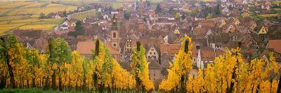 Elevated View of the Riquewihr and Vineyards in Autumn, Alsace, France--Photographic Print