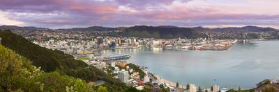 Elevated View over Central Wellington Illuminated at Sunrise, Wellington, North Island, New Zealand-Doug Pearson-Photographic Print