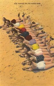 Eleven Bathing Beauties Lying on Sand