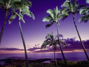Sunset, Poipu Beach, Kauai, HI by Elfi Kluck