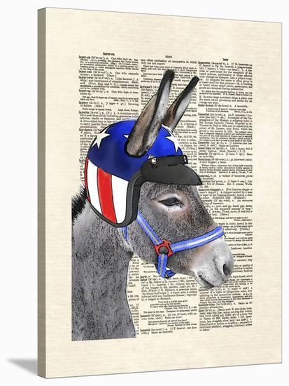 Eli Wonder Donkey-Matt Dinniman-Stretched Canvas Print