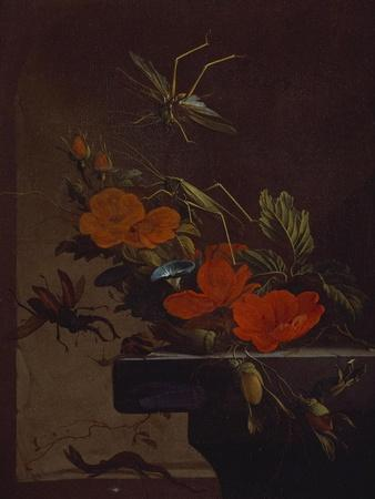 A Bouquet of Roses,  Morning Glory and Hazelnuts on a Ledge, with Grasshoppers, a Stag Beetle and…