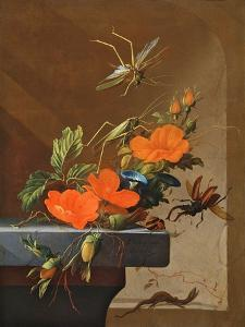 A Bouquet of Roses, Morning Glory and Hazelnuts with Grasshoppers, Stag Beetle and Lizard by Elias Van Den Broeck
