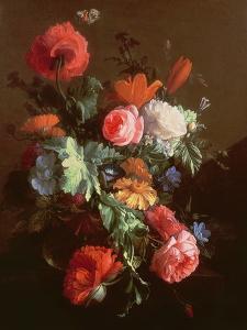 Poppies by Elias Van Den Broeck