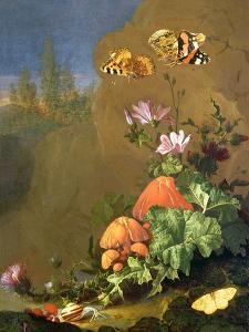 Still Life of Forest Floor with Flowers, Mushrooms and Snails by Elias Van Den Broeck