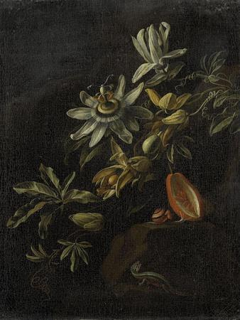 Still Life with Passionflowers